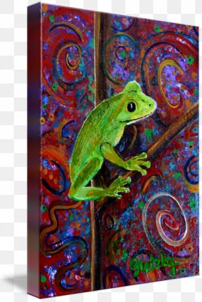 Tree Frog Painting - Tree Frog Art PNG
