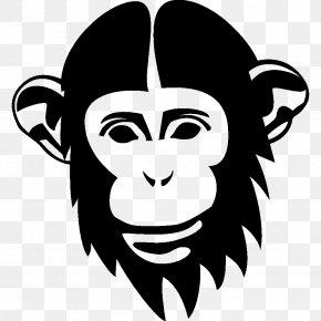Orangutan - Chimpanzee Orangutan Drawing Monkey PNG