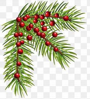 Christmas Pine Corner Clip Art Image - Pine Christmas Clip Art PNG