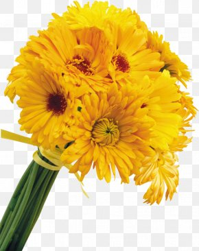 Small Yellow Flowers - Yellow Cut Flowers Color PNG