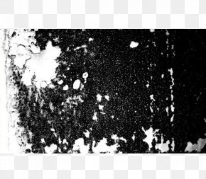 White Wall Texture Black And White Paint Chips Wall Treatment - Black And White Texture Mapping Autodesk Maya PNG