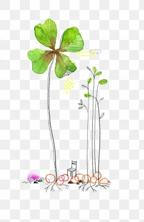 Drawing Clover - Watercolor Painting Drawing Clover Illustration PNG