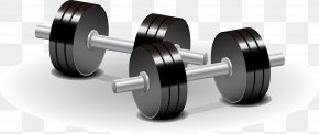Dumbbell Renderings Vector - Dumbbell Weight Training Olympic Weightlifting Physical Exercise PNG
