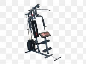 Strenght - Fitness Centre Exercise Bikes Physical Fitness Bench PNG