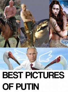 Vladimir Putin - Vladimir Putin Moscow Kremlin United States President Of Russia PNG