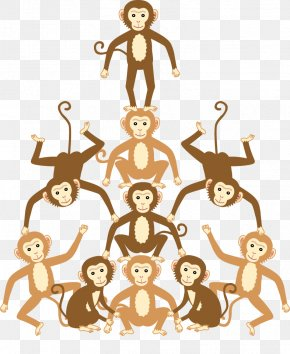 Monkey - Homo Sapiens Human Behavior Clip Art PNG