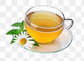 Tea Pic - Green Tea Herbal Tea Drink PNG