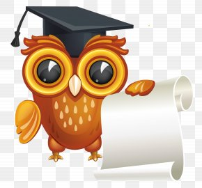 Owl With Diploma Clipart Image - Diploma Graduation Ceremony Clip Art PNG
