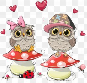 Owl Vector Mushrooms On - Little Owl Drawing Illustration PNG