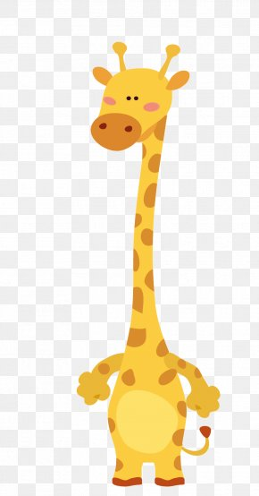 Cartoon Giraffe - Giraffe Lion Vector Graphics Image Drawing PNG