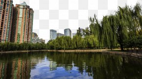 Beijing Tuanjiehu Park Landscape - Tuanjiehu Park Beijing Landscape PNG