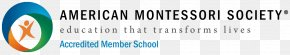 United States - American Montessori Society Montessori Education Educational Accreditation United States PNG
