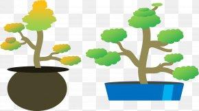 Tree - Tree Microsoft PowerPoint Ppt Ornamental Plant Clip Art PNG