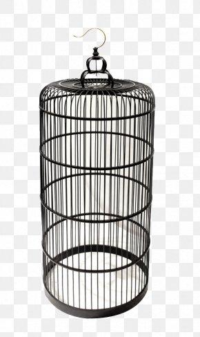 Iron Cage - Birdcage Birdcage Iron Cage PNG