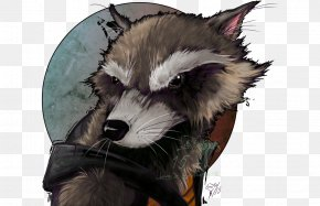 Rocket Raccoon - Snout Fur Animal Carnivora PNG