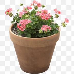 Flower Pot - Flowerpot Houseplant Light + Building PNG