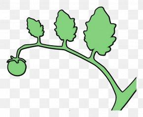 Flower Plant Stem - Leaf Plant Plant Stem Flower PNG