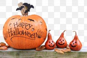 Halloween Pumpkin - Jack-o-lantern Halloween Pumpkin PNG