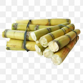 Sugar Cane - Sugarcane Mill Fruit PNG