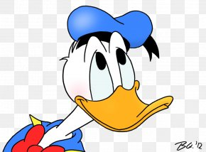 Duck Cartoon Pictures - Donald Duck Mickey Mouse Daisy Duck Pluto PNG