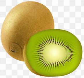 Kiwi Transparent Clip Art Image - Kiwifruit Fruit Salad Food Eating Nutrition Facts Label PNG