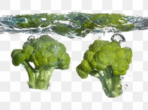 Broccoli Into The Water - Broccoli Cauliflower Food Cabbage Vegetable PNG