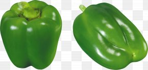 Green Pepper Image - Bell Pepper Vegetable Chili Pepper Food PNG