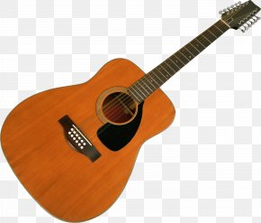 Guitar Image - Electric Guitar Musical Instrument Chordophone PNG