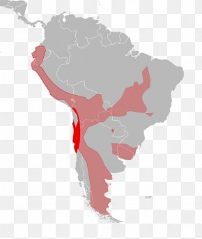 United States - Latin America South America United States Hispanic America Map PNG