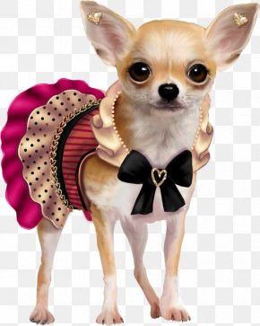 Puppy - Puppy Chihuahua French Bulldog Clip Art PNG
