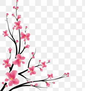 Decking - Cherry Blossom Cherries Vector Graphics Design PNG