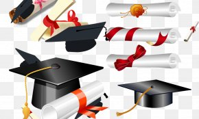 Bachelor Of Cap Diploma - Graduation Ceremony Doctorate Bachelors Degree Academic Certificate PNG