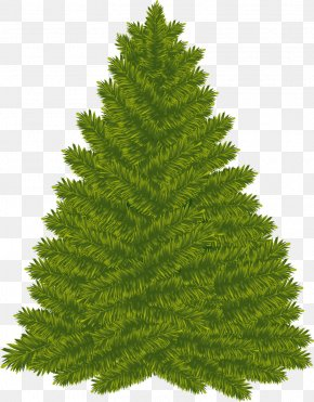 Christmas Tree - Christmas Tree Christmas Day New Year Tree Clip Art PNG