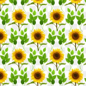 Vector Sunflower - Common Sunflower Mother's Day PNG