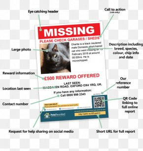 Pet Flyers - Dog Sphynx Cat Pet Poster Advertising PNG