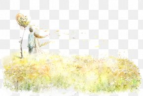 Couple On The Grass - IPad High-definition Television Desktop Environment Computer Wallpaper PNG