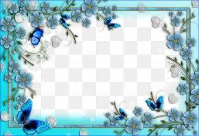 Floral Border - Picture Frames PNG