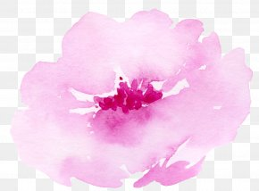 Pink Roses Painting - Watercolour Flowers Watercolor: Flowers Painting Illustration PNG