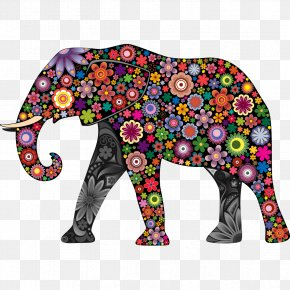 Color Elephant - Elephant Wall Decal Colorful Animals Sticker PNG