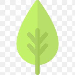 Leaf - Leaf Plant Stem Tree Font PNG