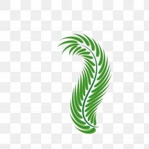 Easter Palm Leaves - Palm-leaf Manuscript Green Arecaceae PNG