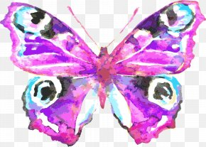 Vector Painted Butterfly - Butterfly Watercolor Painting Drawing Royalty-free Illustration PNG