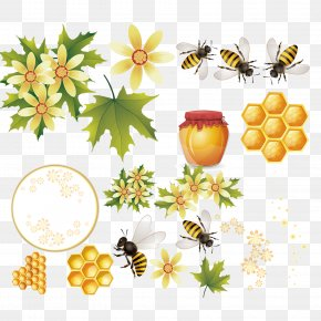 Honey Bee Hive Vector Material - Honey Bee Download PNG