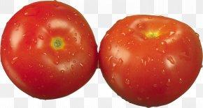Tomato - Shopska Salad Pickled Cucumber Greek Salad Tomato PNG