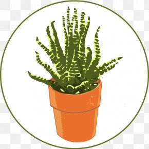 Citroën Cactus M Alcoholics Anonymous Flowerpot Plant Stem Symbol PNG