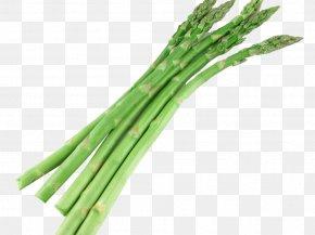 Agathe Auproux - Bunch Of Asparagus Welsh Onion Vegetarian Cuisine PNG