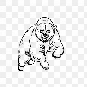 Bear - Grizzly Bear Koala Giant Panda Coloring Book PNG