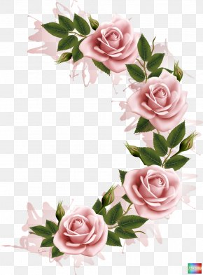 Flower Frame - Flower Stock Photography Clip Art PNG