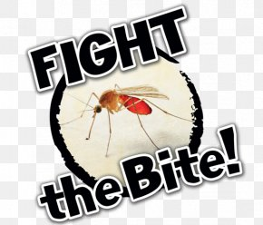Natives Fight Win - Mosquito-Borne Illnesses Image Poster Insect Bites And Stings PNG