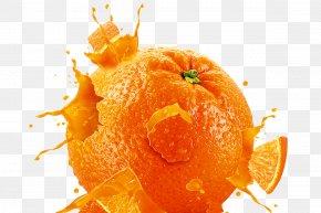 Orange File - Orange PNG